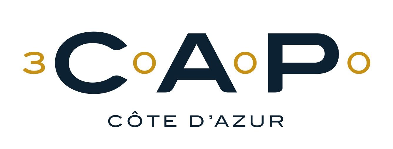 CAP3000-logo