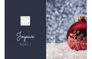 Carte Cadeau de Noël PIT-N.com